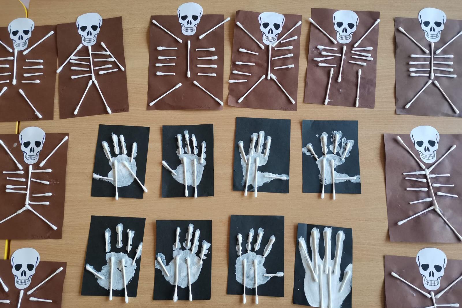 Kosti v našem těle 19.11.2020
